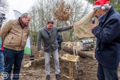 20181215-amersfoort_elisabeth-groen_planten-eerste-boom-078