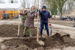 20181215-amersfoort_elisabeth-groen_planten-eerste-boom-092