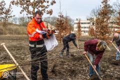 20190220-amersfoort_elisabeth-groen_planten_bomen-002