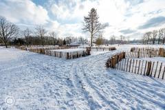 20210210_amersfoort_randenbroek_elisabeth-groen_017