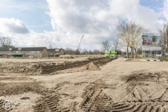 20190305-amersfoort_hogekwartier_veld-8-006
