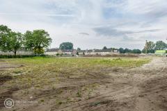 20190711-amersfoort_hogekwartier_veld-8-003
