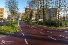 20190114-amersfoort_de-hoef-029