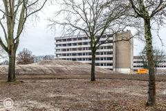 20181215-amersfoort_elisabeth-groen_planten-eerste-boom-027