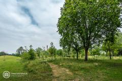 1_20210625_amersfoort_park-elisabeth_architectuur_019