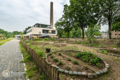 1_20210625_amersfoort_park-elisabeth_architectuur_021