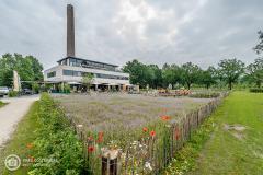 1_20210625_amersfoort_park-elisabeth_architectuur_026