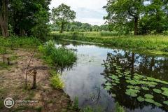 20210622_amersfoort_park-elisabeth-groen_031