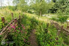 20210622_amersfoort_park-elisabeth-groen_041