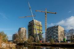 20201109_amersfoort_hogekwartier_veld-6_020