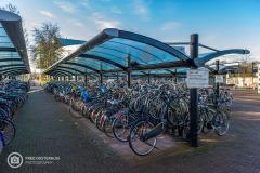20190114-amersfoort_de-hoef-003