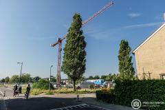 20140718-amersfoort_hogekwartier_veld-1-1